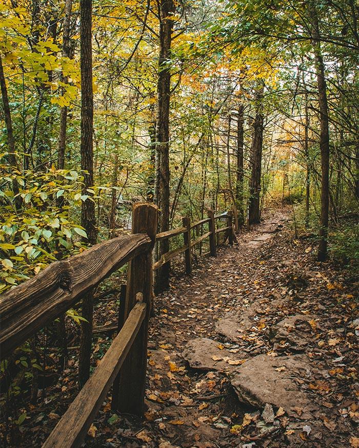 A trail at Raven Run - Lexington's Outdoor Oasis